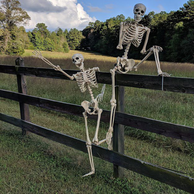 weekend events – Witch's Haunted Barn at Firefly Farm