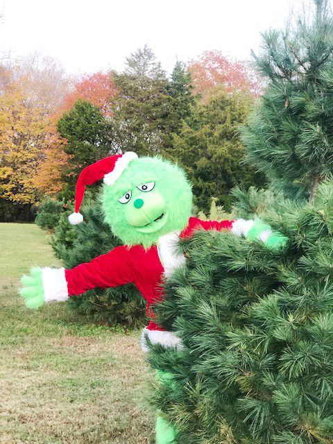 """""""How the Grinch Stole Christmas"""" reading at Smith's Family Fun Farm"""